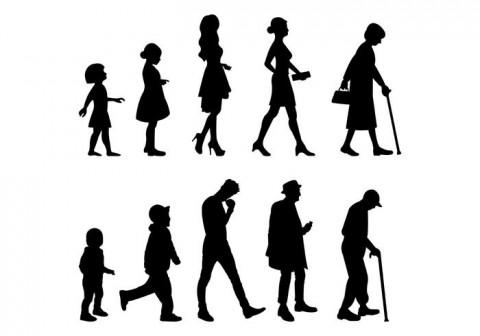 Human Development Family Sciences